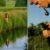 Łowienie szczupaków w rowach melioracyjnych